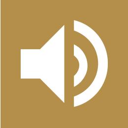 audio speaker on